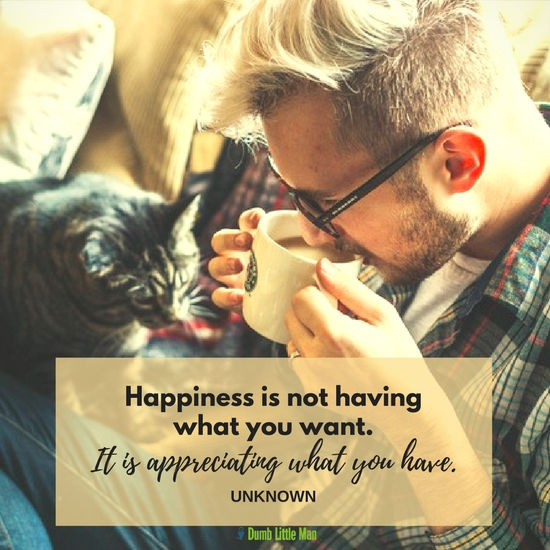 Happiness Is Not Having What You Want. It Is Appreciating What You Have.