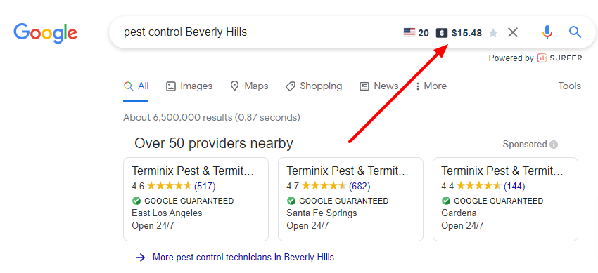 pest-control-Beverly-Hills-Google-Search