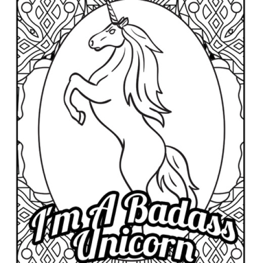 Drunk Foul-Mouth Jerk Unicorns: A Weird & Inappropriate Coloring ...