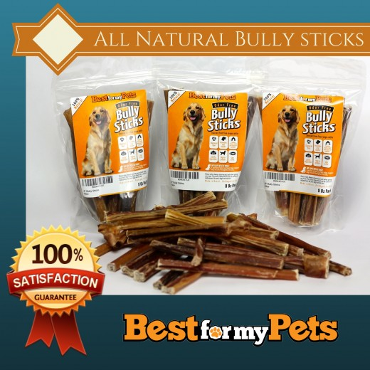 bully sticks review promo campaign. Black Bedroom Furniture Sets. Home Design Ideas