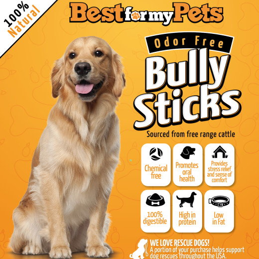 bully sticks odor free campaign. Black Bedroom Furniture Sets. Home Design Ideas